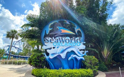 SeaWorld Gifts Execs Millions during Crisis